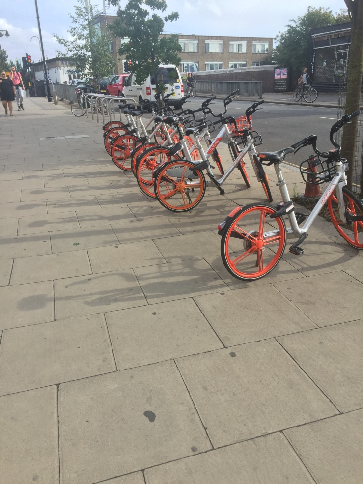 a row of orange and white rental bikes on the right hand side of the pavement. Behind the bikes further down the street other bike racks are just visible.