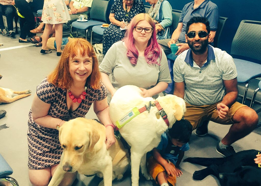 A busy room full of people and guide dogs. 3 adults crouch on the floor, a woman with red hair smiling on the left, me dark glasses and dark hair. Several guide dogs are sitting, lying and engaging with the 3 adults.