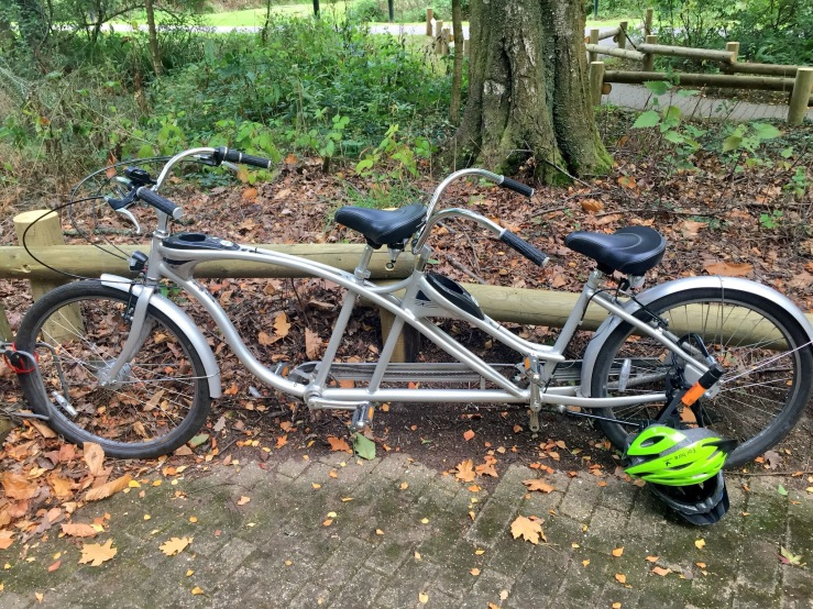 A silver tandem bicycle rests against a low wooden fence. The tandem has a vintage look with long curved handle bars at the front and back. Two helmets are on the ground attached to the bike via a D bike lock. One helmet is bright green, the other is upside down. In the background woodland and a path.