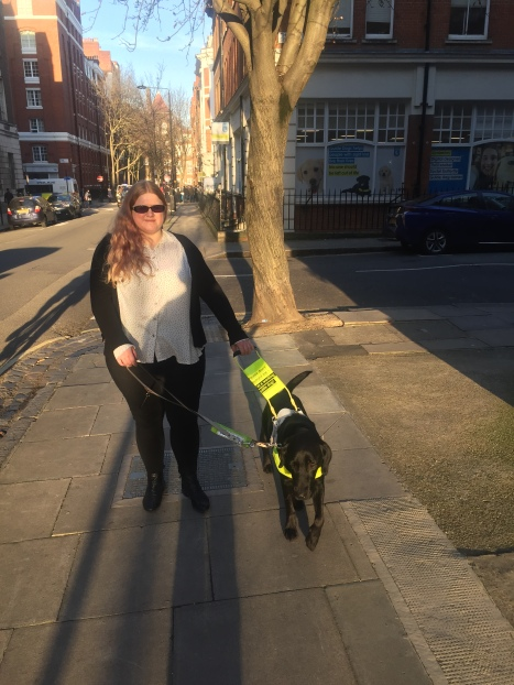 Amy walks down a sunny street. she is holding onto the lead and harness of guide dog in training oakie. Oakie wears a white harness with handle and fluorescent chest piece. Amy is smiling, she wears sunglasses, a white and black spotty blouse and black jeans.