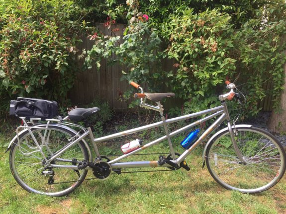 A silver tandem bicycle is in a garden. It has a small pannier bag at the back, a larger comfy seat in the stoker or second rider position, and a racing seat in the pilot or front position. There are water battles attached to the frame. It has brown handlebars.
