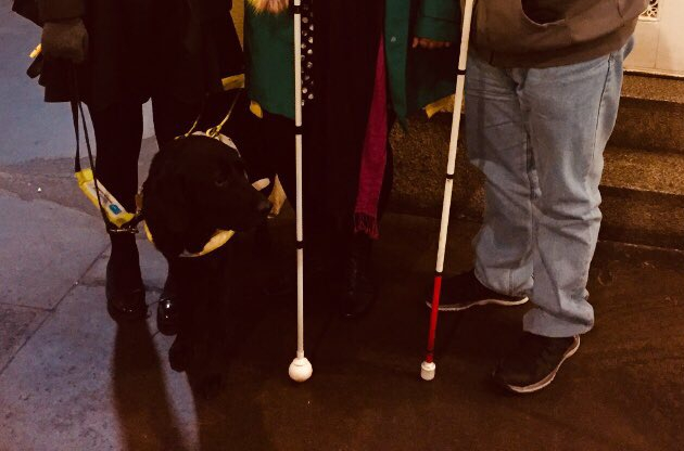 Three pairs of legs, on the left legs in black tights with a black guide dog in a yellow harness, in the middle black jeans with a white cane, on the right light blue jeans with a white cane with a red bottom section.